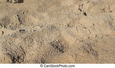 Footsteps In The Sand - Scene contains sand and footsteps in...