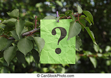 Question mark hanging on a tree. Close up. Concept image.