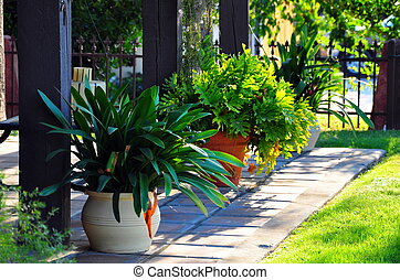 Potted plants on a manicured front porch