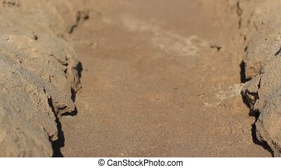 Sand Tunnel - Footage starts with focusing ant tilting from...