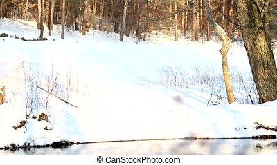Frozen River 3