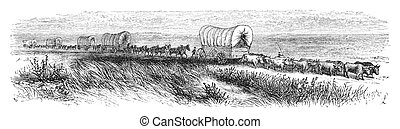 Journey west - Wagopns traveling on prairie. Illustration...