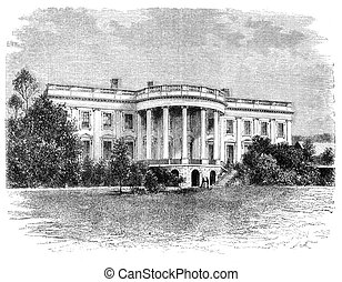 White House - White house in Washington Illustration...