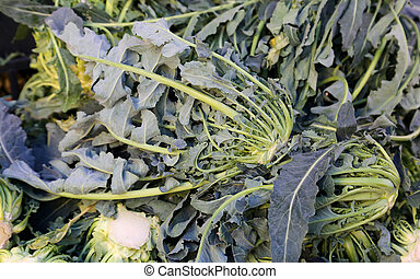 Genuine original green broccoli Northern Italy for sale at...