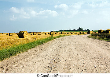 Road in the field