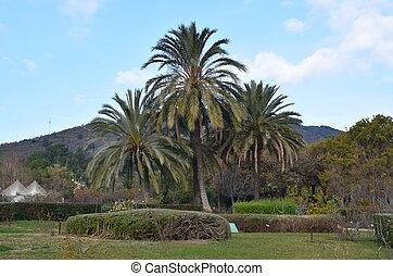 Parque de Cervantes - Parque Cervantes con un conjunto de...