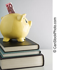 piggybank on pile of books - yellow piggy bank and Euro...