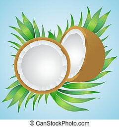 Vector illustration of a coconut  with palm branches. eps10