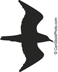 Silhouette of the bird flying in black color. - Silhouette...