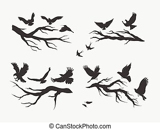 flying birds, mounted on branches - silhouettes of flying...