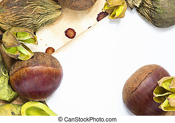 Raw chestnuts and dried plants background - A background...