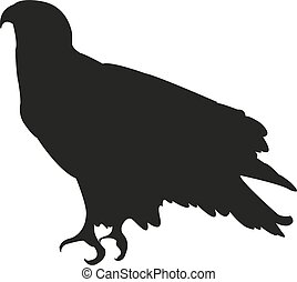 Bald Eagle silhouette sitting. Vector illustration EPS10