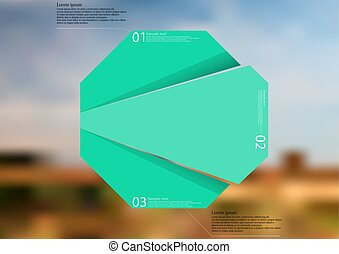 Illustration infographic template with green octagon...