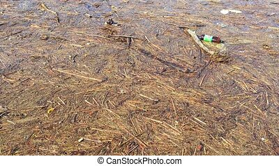 Trash floating on water. Litter and wood pieces. Enviroment...