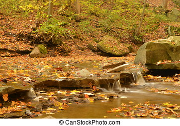 Down river from Blue Hen Falls in Autumn