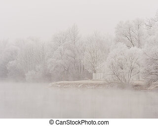 landscape with trees and rime in cold weather in winter....