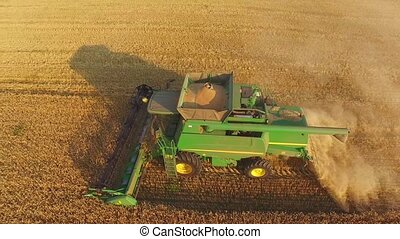 Aerial view of a combine. Green harvester in motion. Gather...