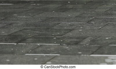 Raindrops on the Pavement in a City Park