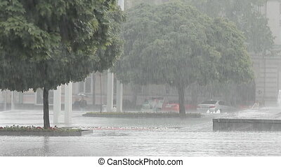 Heavy Rain a Downpour in the City Park - Heavy rain a...
