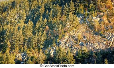 Moving Past Forest And Cliffs At Sunset - Moving past sunny...