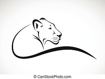 Vector of a lion female design on white background, Wild...