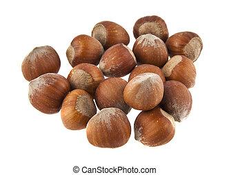 hazelnuts isolated on white background closeup