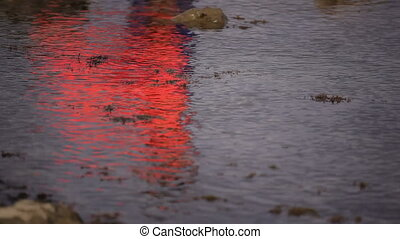 Bright reflection in the water. Locked down, HD1080 - 25p
