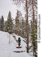 Winter snow landscape - Winter landscape - wooden stairs and...