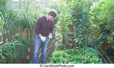 Gardener watering flowers and trees in gardenhouse