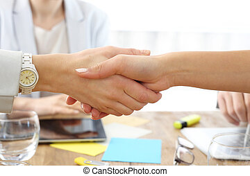 Handshake - Women shake hands sealing the successful...