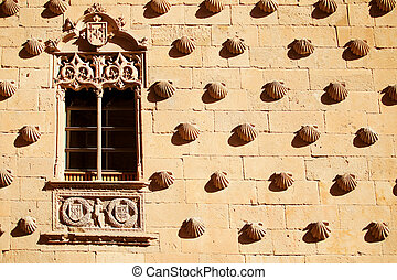 Casa de las Conchas with La Clerecia Church in Salamanca,...
