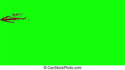4k Blood Burst Slow Motion (Green Screen) 41 - Nice and real...