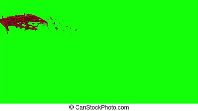 Blood Burst Slow Motion (Green Screen) 33 - Nice and real 4K...