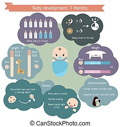 Child development infographics. Baby Growth Guide. Age 1...