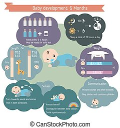 Child development infographics. Baby Growth Guide. Age 6...
