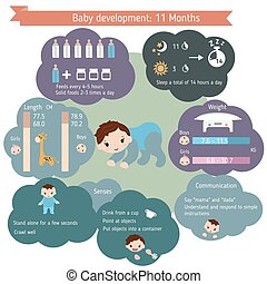 Child development infographics. Baby Growth Guide. Age 11...