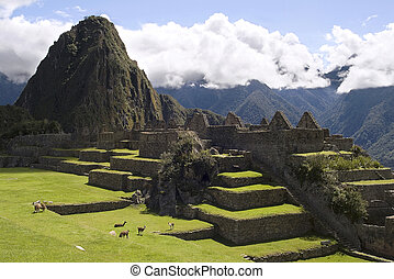 View of Machu Picchu, Peru - View of inca city of Machu...