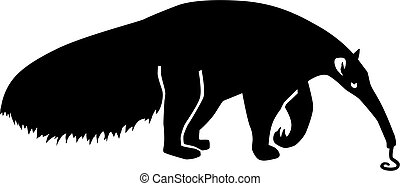 Ant Eater silhouette with tongue