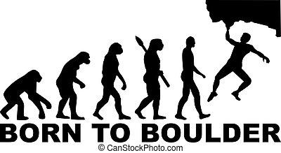 Born to boulder evolution