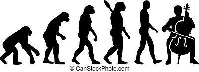 Cello evolution