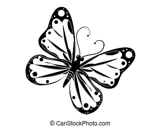 butterfly - vector, butterfly, animal, insect, isolated,...