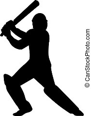 Cricket Player Batsman