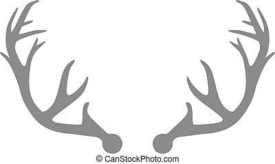 Grey deer antlers