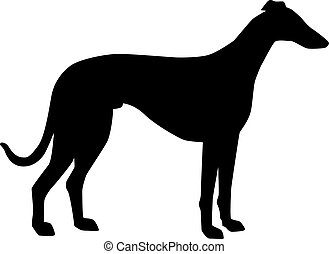Greyhound silhouette