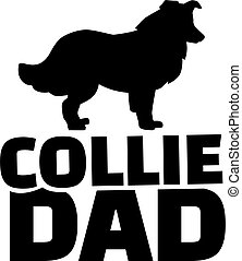 Collie dad