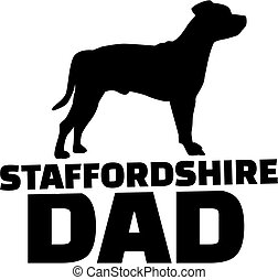Staffordshire Bull Terrier dad