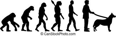 Husky evolution