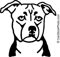Staffordshire Bull Terrier head