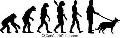 alemão, pastor, evolução