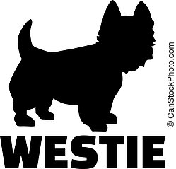 West Highland Terrier with breed name